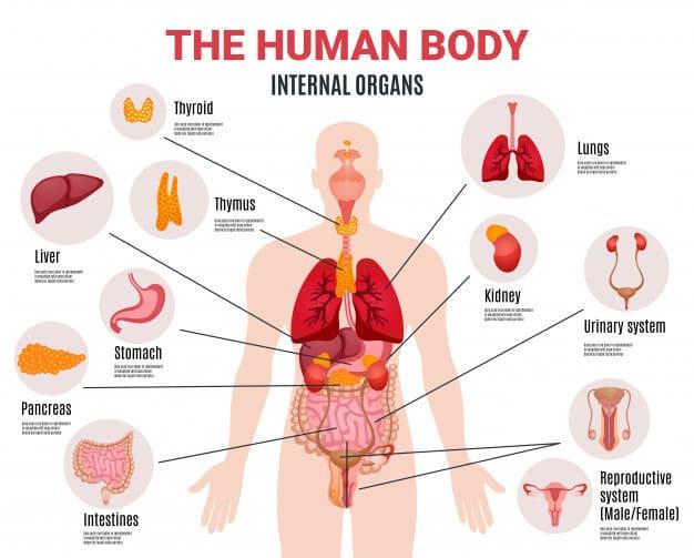 аутоиммунный тиреоидит симптомы